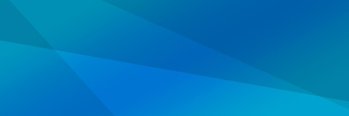 Buy vs. Build: Why Sageflo Solutions Make Financial and Practical Sense